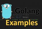 golang examples